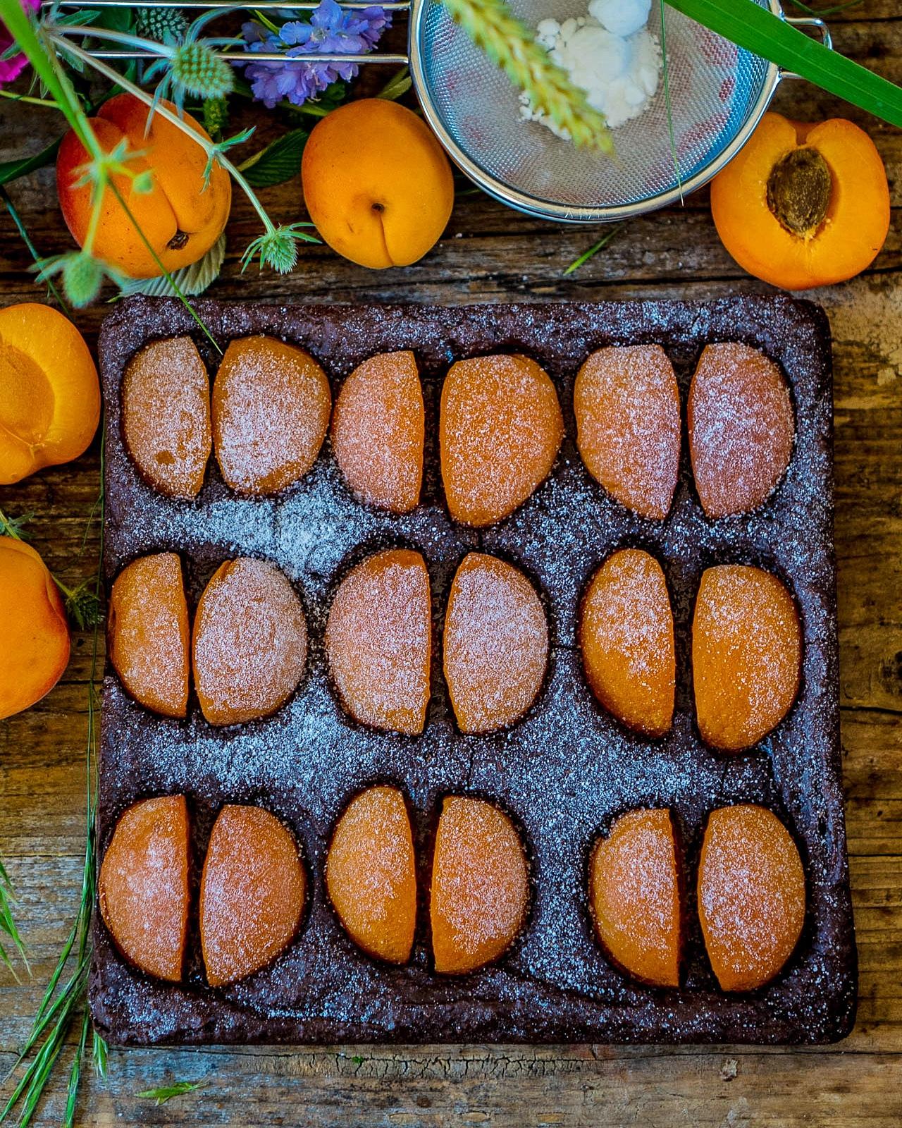Gesunder Schokokuchen mit Aprikosen vegan