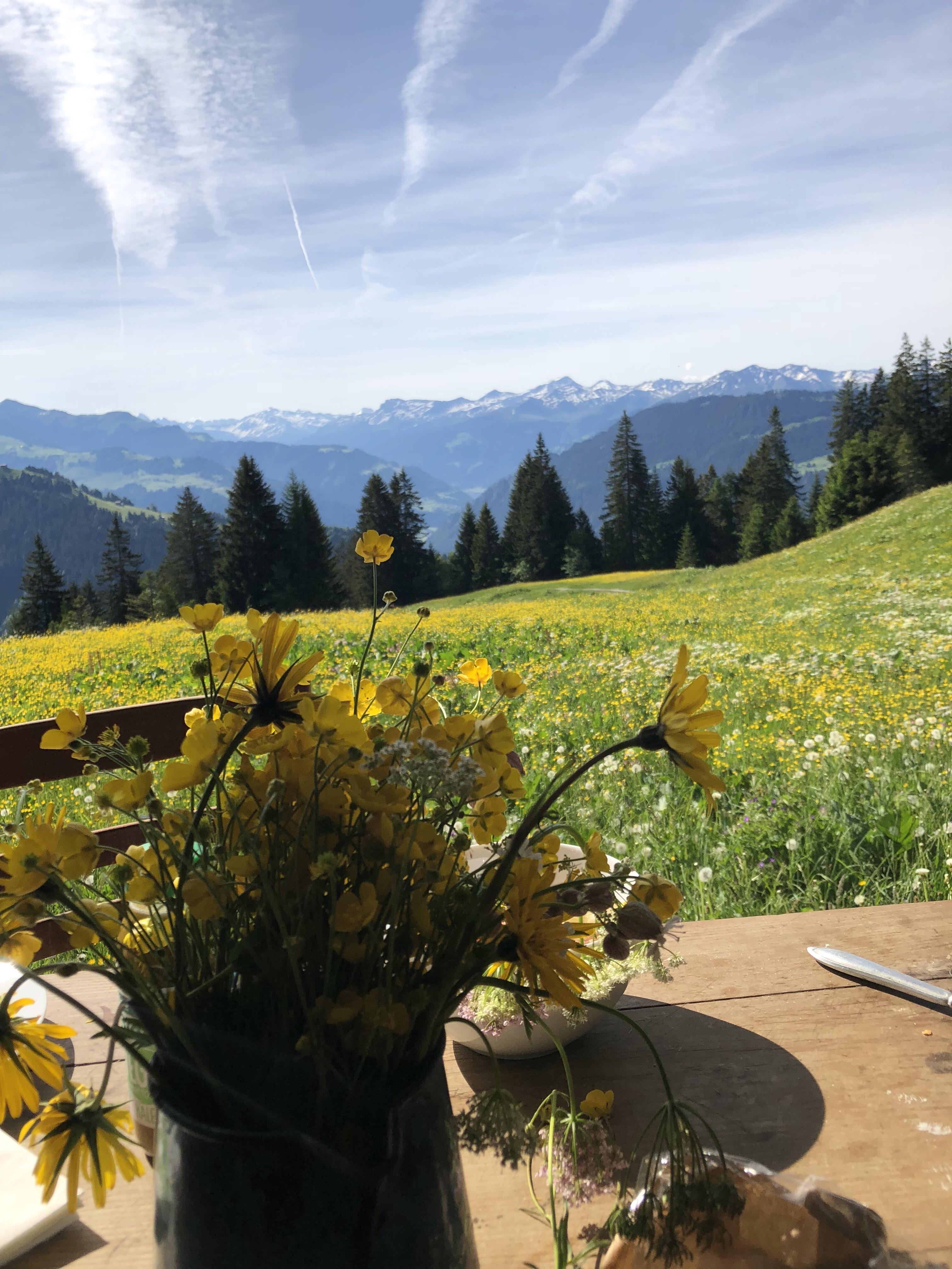 Unser Wochenende auf einer Alphütte im Prättigau Mrs Flury