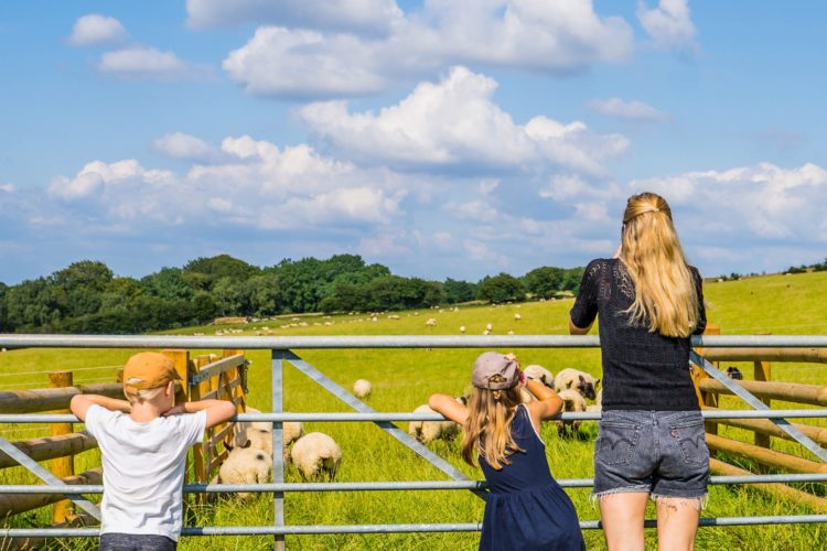 England Reise mit Kindern – Region Oxford Cotswolds